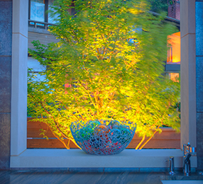 tree-highlighting-and-pathway-lighting